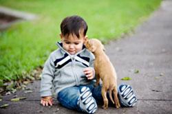 puppy_little_boy_resized